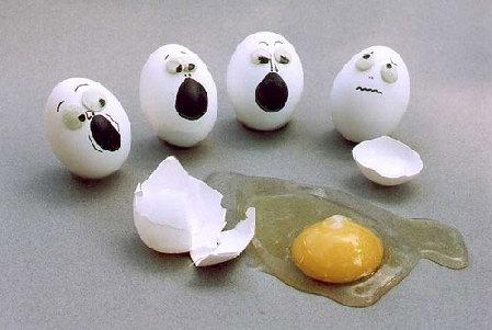 蛋蛋2.jpg